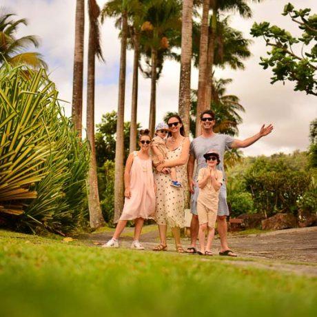 jardin Malanga Guadeloupe nous jardin (27)